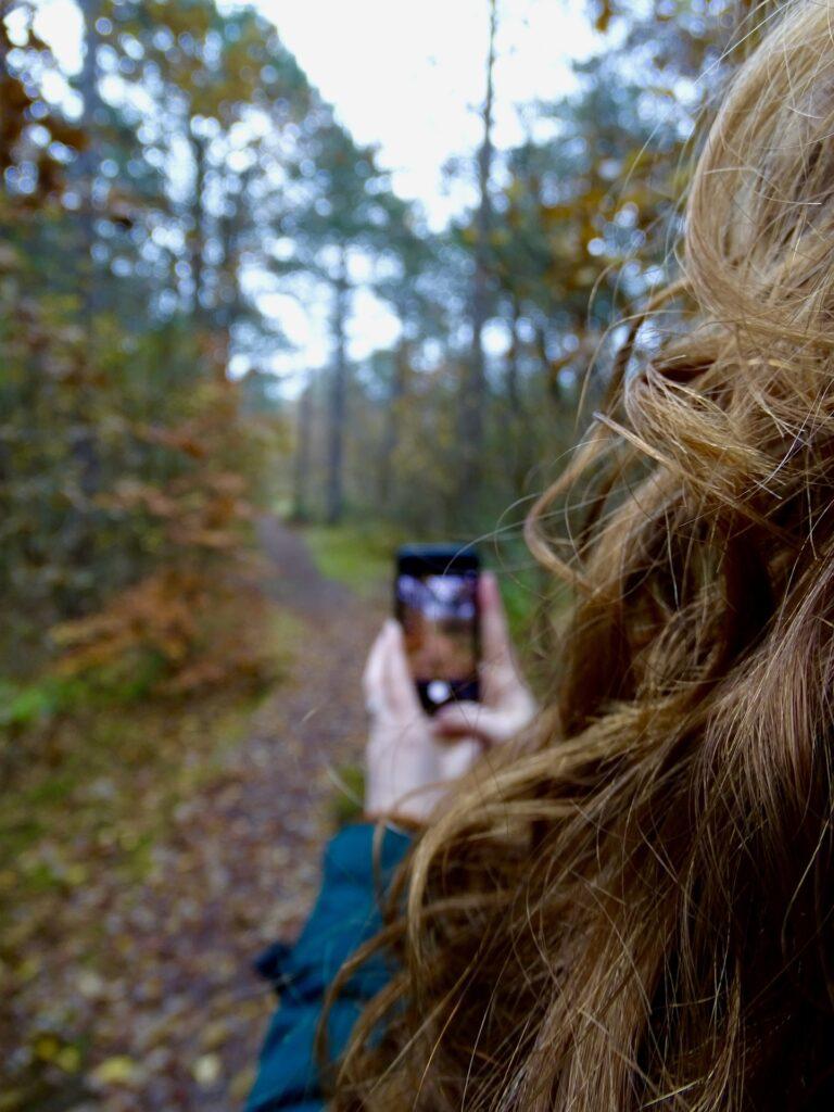 champignon et téléphone